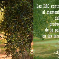 JSA achaca a la mala gestión y la falta de previsión del gobierno de Rajoy la propuesta de la comisión europea de recortar las ayudas de la PAC